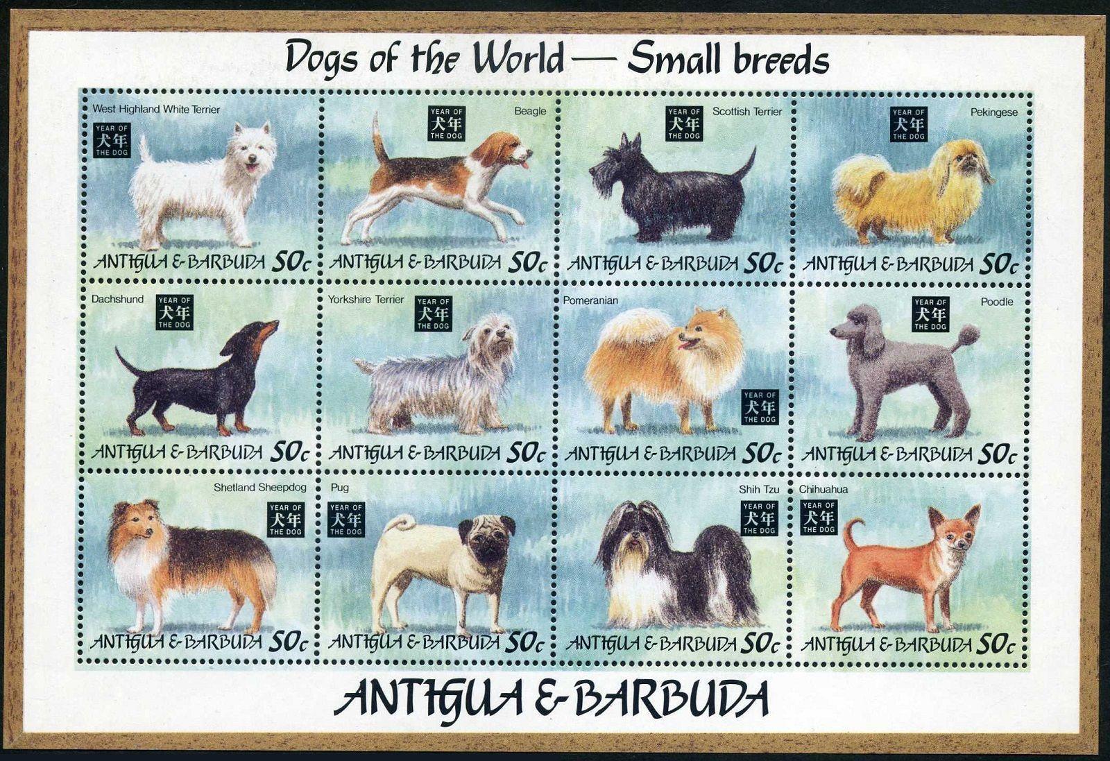 Dog Art Postage Stamp Souvenir Sheet ARGENTINE DOGO ARGENTINO Spanish Sahara MNH