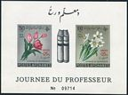 Afghanistan B51a, B51a imperf mnh-