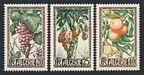 Algeria 229-231