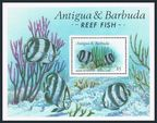 Antigua 1013