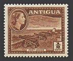 Antigua 107