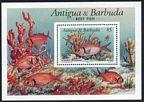 Antigua 1303
