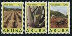 Aruba 29-31