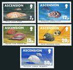 Ascension 340-344