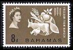 Bahamas 180 mlh