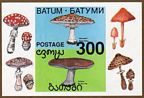 Batum Mushrooms Sheet x6, Souv. sheet
