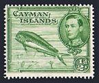 Cayman 101 mlh